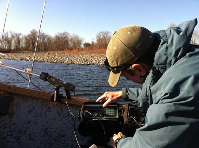 VSP Fish Monitoring